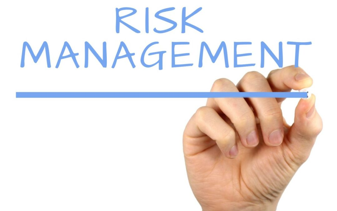 Il Risk Management